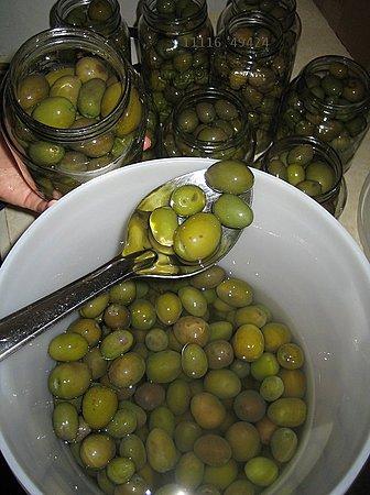11116.494-Olives.jpg